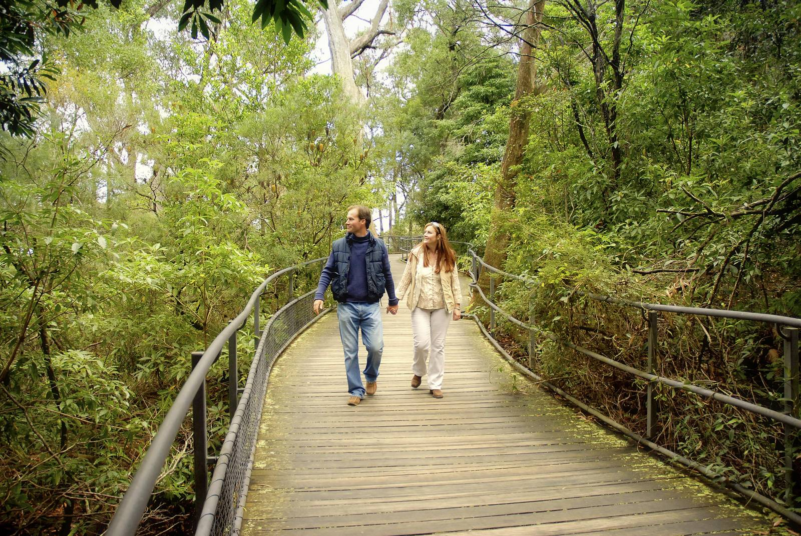 Our favourite spots: Royal National Park