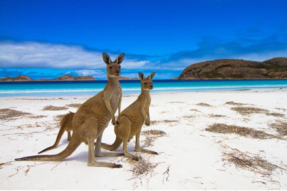 Top Family Destinations In Australia