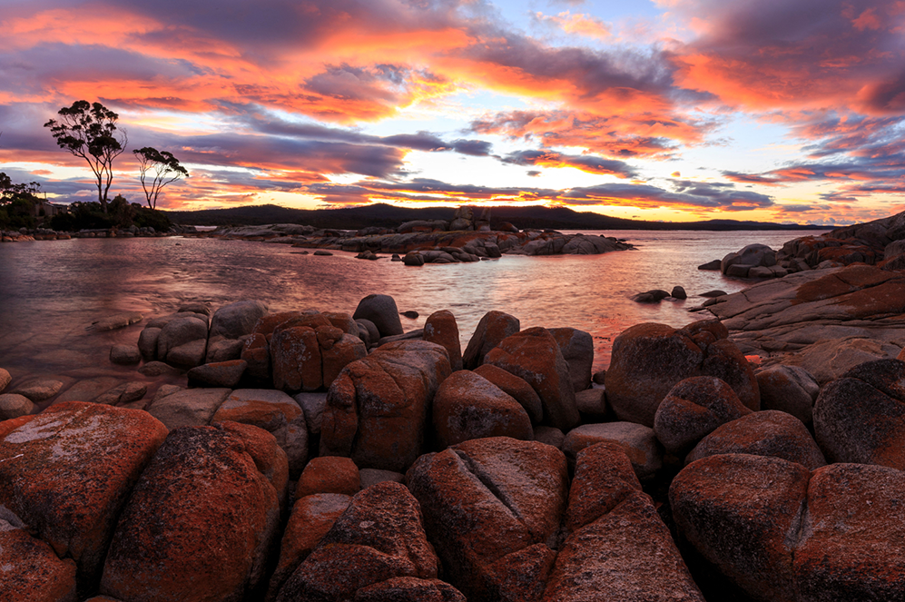 Wish You Were Here - Bay of Fires