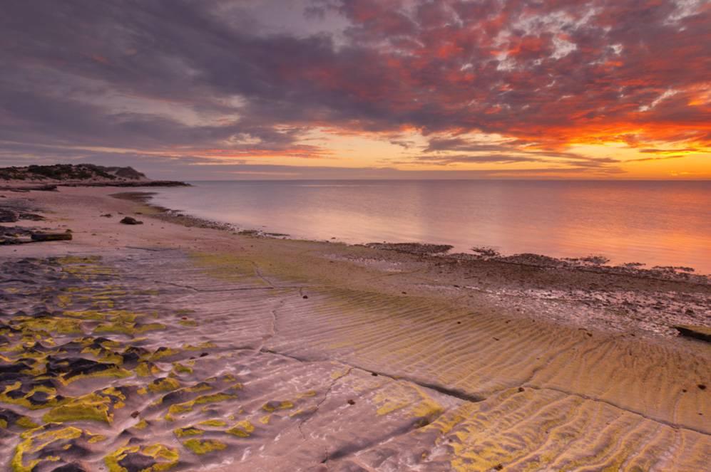 Wish You Were Here - Ningaloo Reef