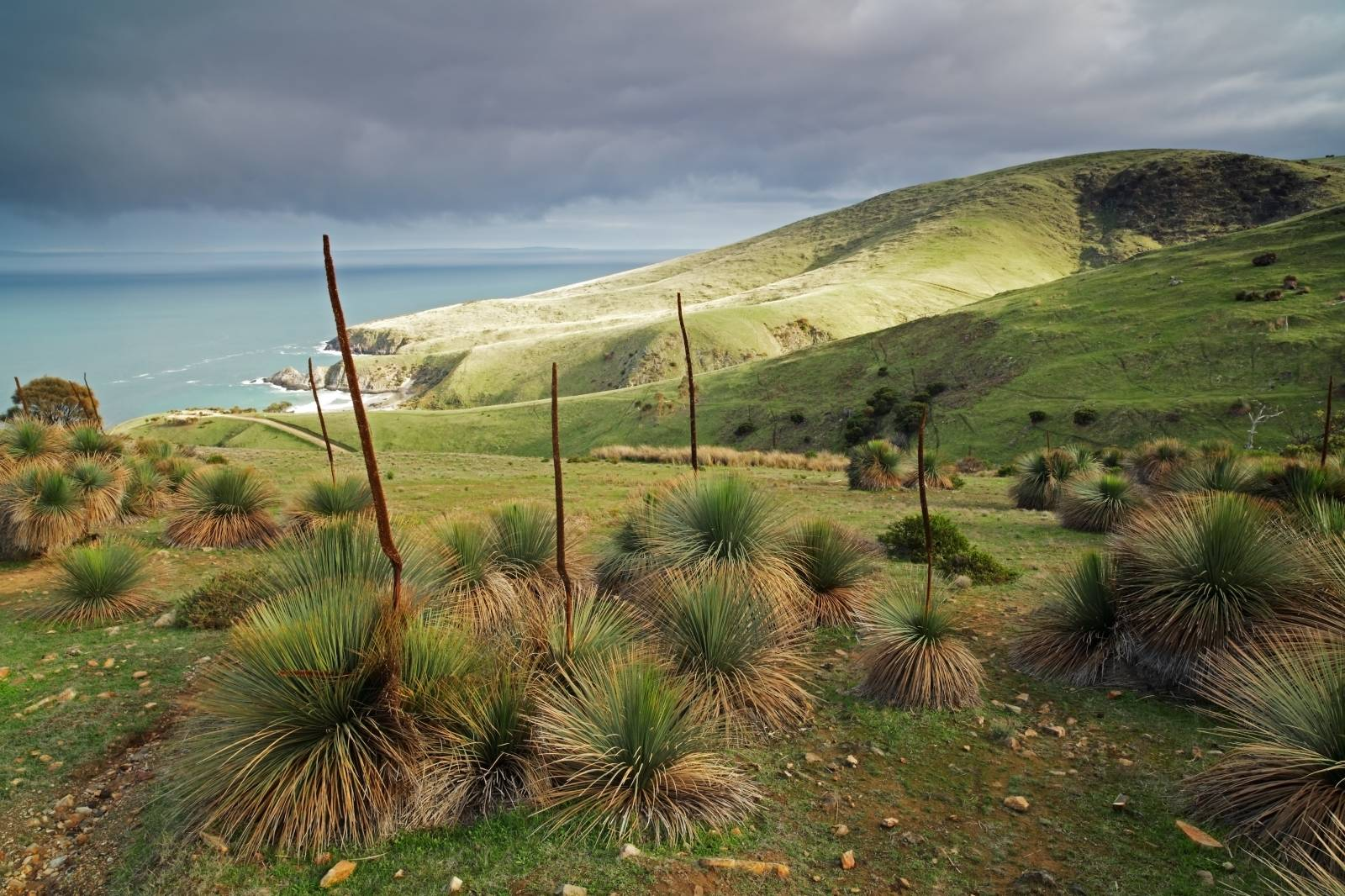 Top 8 Places to Experience - Myponga Resevoir Lookout
