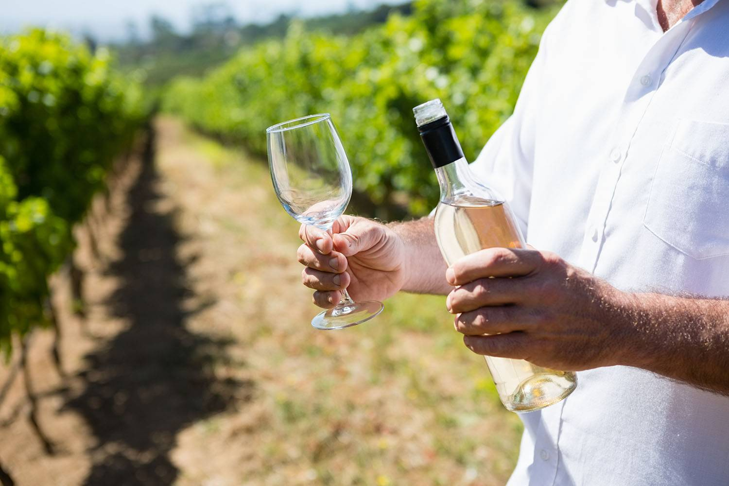 The NSW Food and Wine Trail
